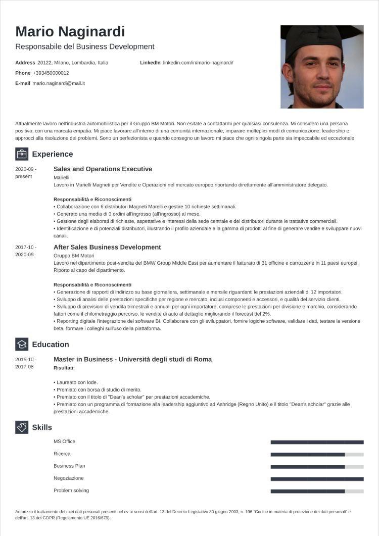 curriculum grafico newcast