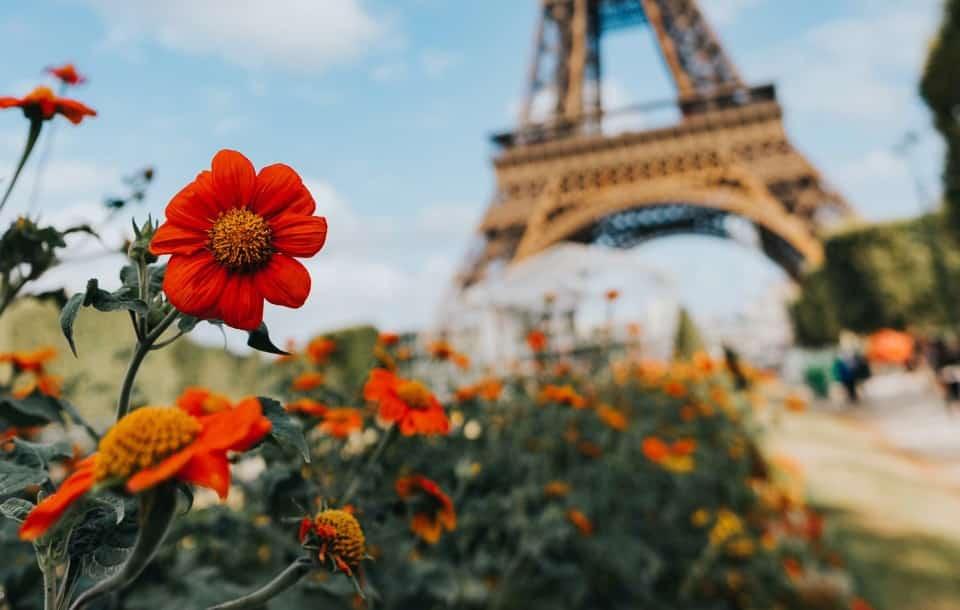 Il curriculum in francese nel 2021: guida al CV in francese