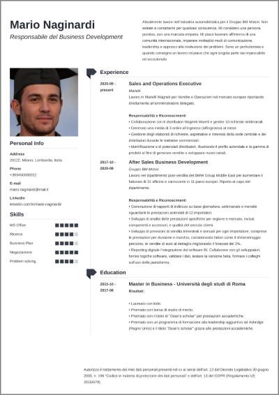 cv infografico