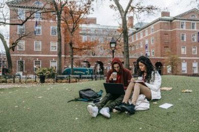 Curriculum vitae università in corso: esempi e modelli